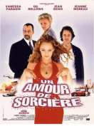 Affiche du film Un amour de sorci�re