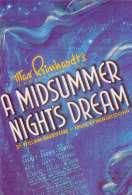 Affiche du film Songe d'une Nuit d'ete