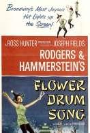 Au Rythme des Tambours Fleuris, le film