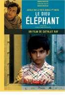 Affiche du film Le Dieu elephant