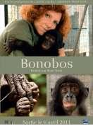 Affiche du film Bonobos