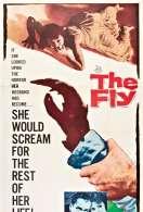 Affiche du film La mouche noire
