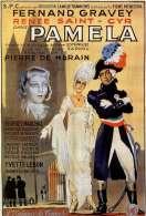 Affiche du film Pamela