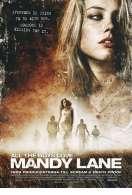 Affiche du film Tous les gar�ons aiment Mandy Lane