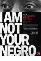 I Am Not Your Negro, le film