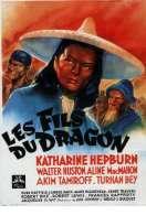 Affiche du film Les Fils du Dragon