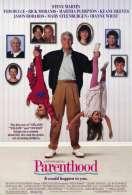 Affiche du film Portrait crache d'une famille modele