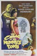 Affiche du film Les mal�fices de la momie