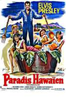 Affiche du film Paradis Hawaien