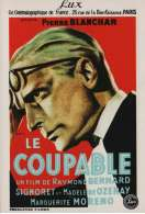 Le Coupable, le film