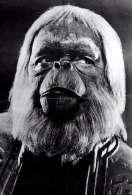 Affiche du film La plan�te des singes