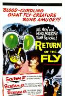 Affiche du film Return of the fly