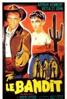 Affiche du film Le bandit