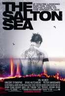 Affiche du film Salton Sea