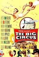 Affiche du film Le Cirque Fantastique