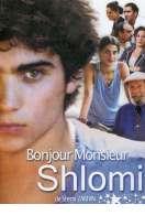 Affiche du film Bonjour Monsieur Shlomi