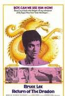 Affiche du film La fureur du dragon