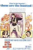 Affiche du film Le Crash Mysterieux