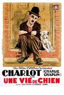 Affiche du film Une vie de chien