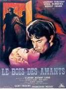 Affiche du film Le Bois des Amants