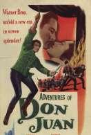 Affiche du film Les Aventures de Don Juan