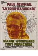 Affiche du film La Toile d'araignee