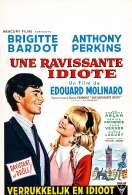 Affiche du film Une Ravissante Idiote