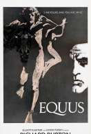 Affiche du film Equus
