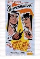 Affiche du film La Garconniere