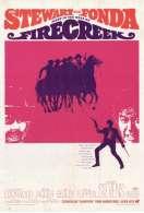 Les Cinq Hors la Loi, le film