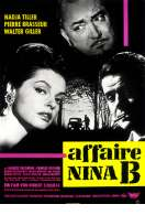 Affiche du film L'affaire Nina B