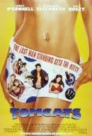Affiche du film Tomcats