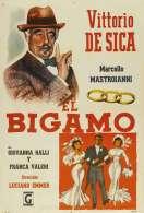 Le Bigame, le film