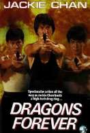 Affiche du film Dragons Forever