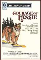 Affiche du film Le Courage de Lassie