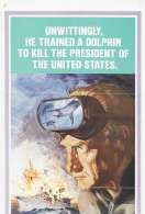 Affiche du film Le Jour du Dauphin