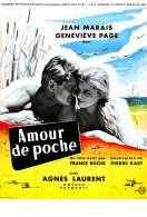 Affiche du film Un Amour de Poche