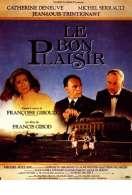 Affiche du film Le bon plaisir