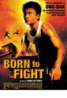 Born To Fight, le film