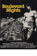 Affiche du film Boulevard nights