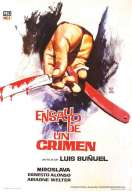 Affiche du film Ensayo Crimen