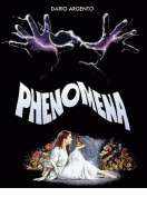 Phenomena, le film