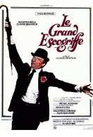 Affiche du film Le grand escogriffe