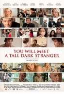 Affiche du film Vous allez rencontrer un bel et sombre inconnu