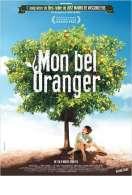 Mon bel oranger, le film