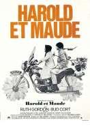 Affiche du film Harold et Maude