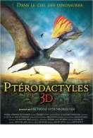 Ptérodactyles 3D : Dans le ciel des dinosaures, le film