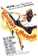 Affiche du film Feerie a Mexico