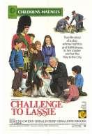 Affiche du film Le Defi de Lassie