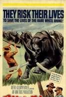 Sur la Piste du Rhinoceros Blanc, le film